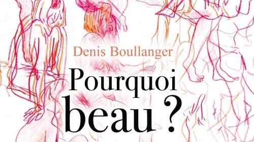 Photo Livre de Denis BOULLANGER