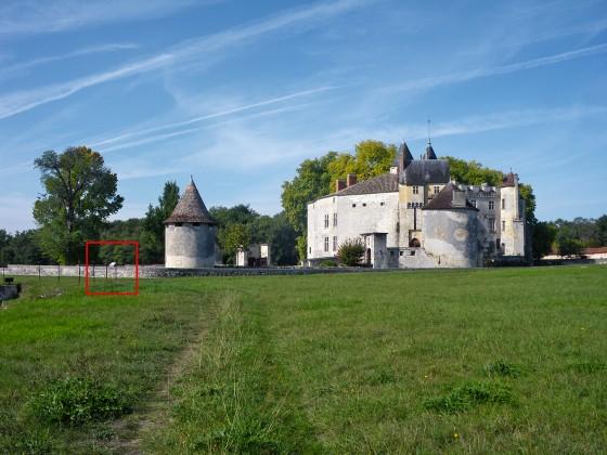 Photo Château Montesquieu - Parc Régulier